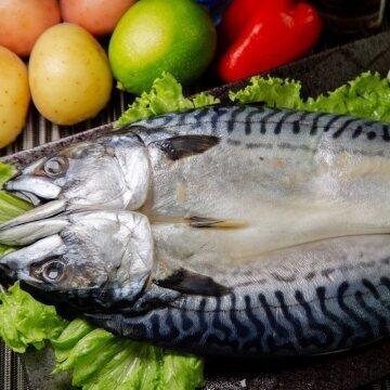 挪威薄鹽鯖魚一夜干/整尾對剖420g FNOFI020420