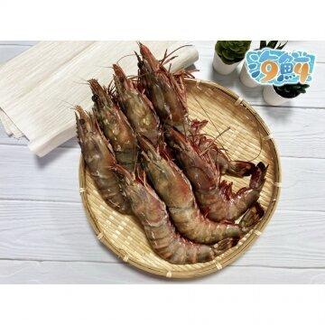 戰斧海虎蝦(手臂蝦)